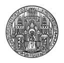 heidelberg-university-ruperto-carola-logo